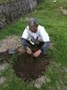 苗木の支え木